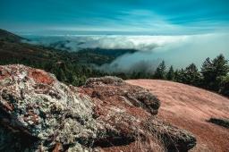A panoramic contrast – Mt. Tamalpais State Park