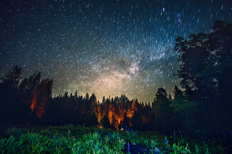 Starry skies, Pipi Valley, near Jackson, CA