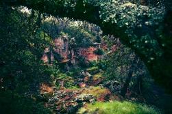 Griffith quarry