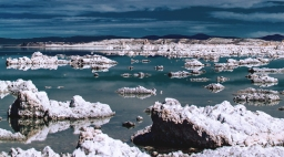 The rush of earth herself – Briny shallows at Mono Lake