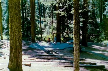 Pinecrest, CA - Olympus XA