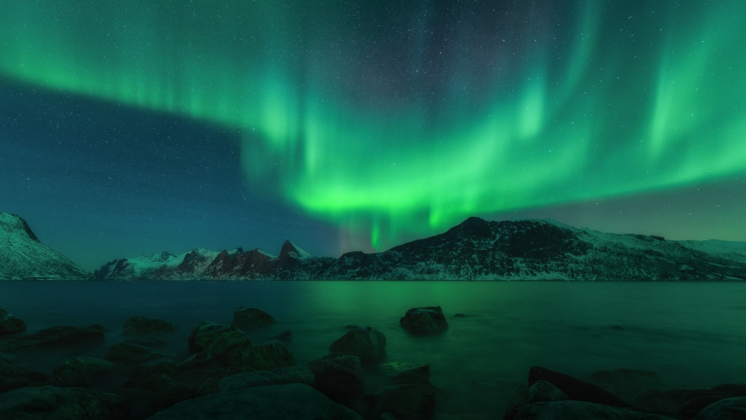 Copyright 2015 - Stian Klo, Lofoten Tours