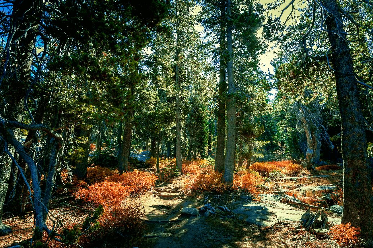 Desolation Wilderness, Hemlock Lake