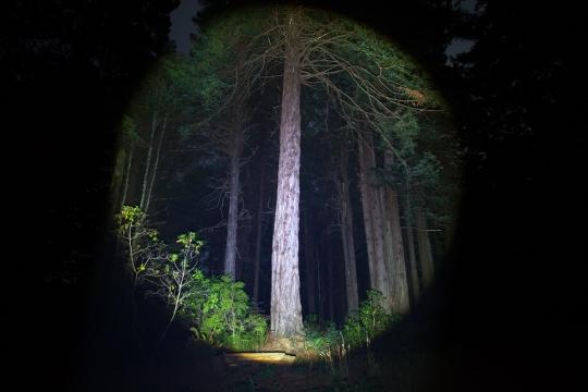 LED Lenser P7.2 Flashlight Review