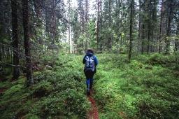 Finding my ancestors in the forests of Ölme, Sweden